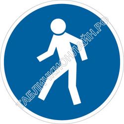 Изображение предписывающего знака M 10 Проход здесь ГОСТ Р 12.4.026-2015